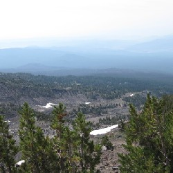 Mount Adams Tree Line