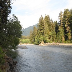 Hoh River (East)