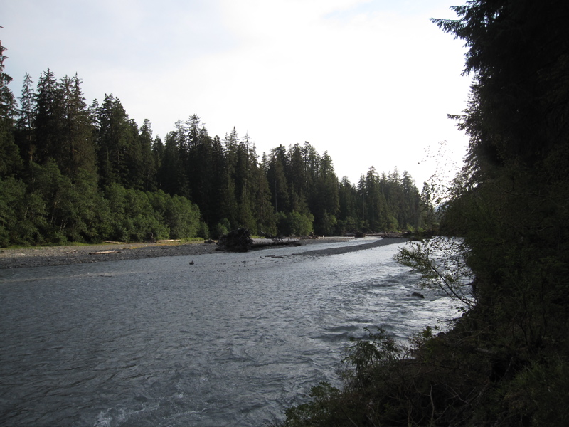 Hoh River (West)