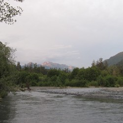 Hoh River from Five Mile Island Campground