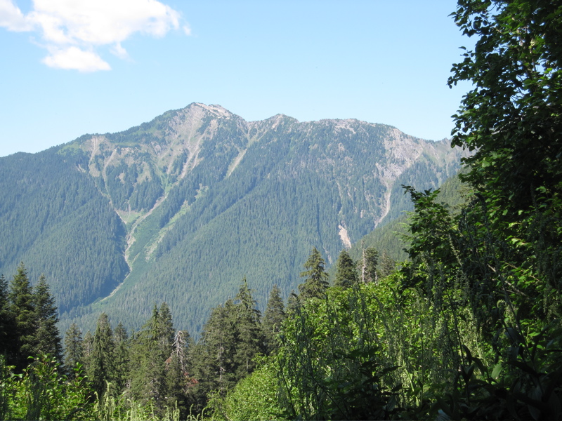 Southern Ridge of Hoh River Valley