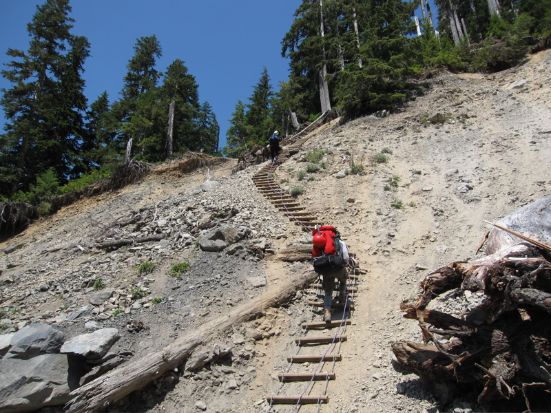 Rock Slide Ladder